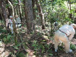 木うその森での下草刈り作業