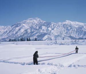 Resized雪ざらし