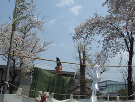 天津司舞の「御鹿島様」(おかしまさま)